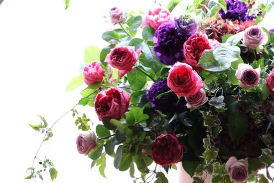 紫式部 バラの種類